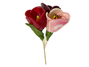 Colored tulips #4