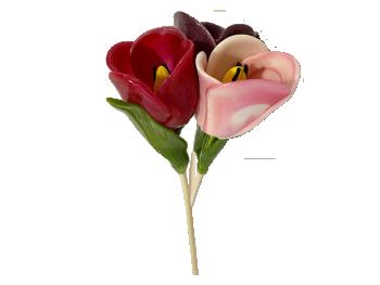 Кольорові тюльпани #4